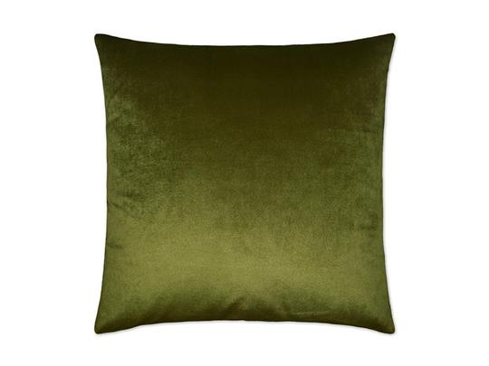 Aloe Belvedere Pillow